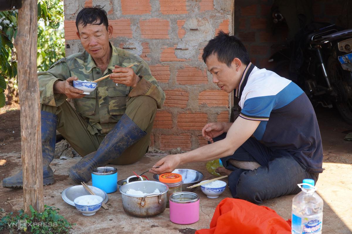 Nông dân Gia Lai tưới cà phê ngày lẫn đêm