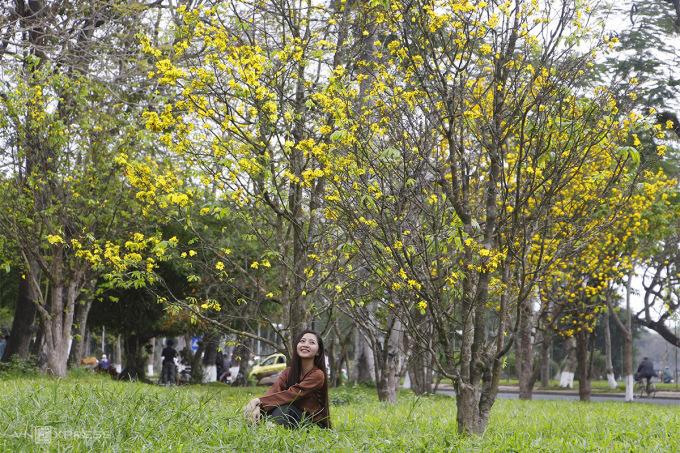 Người dân thích thú chụp ảnh lưu niệm dưới vườn hoàng mai. Ảnh: Võ Thạnh