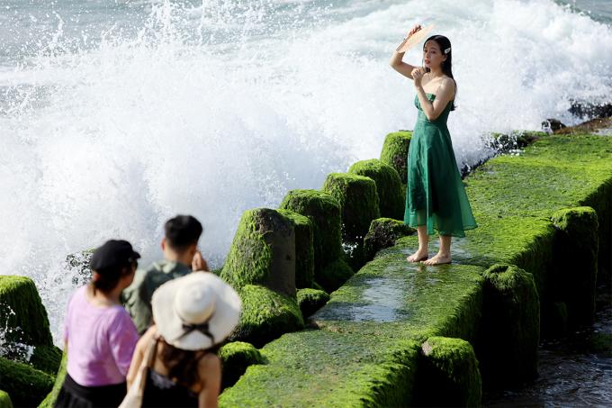 Bãi rêu xanh mướt ở Nha Trang đang hút khách đến tham quan, chụp ảnh: Ảnh: Xuân Ngọc.