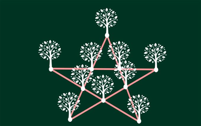 Trồng thành hình ngôi sao
