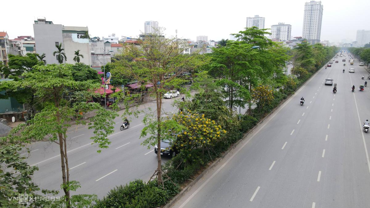 Những tuyến đường nhiều tầng cây xanh ở Hà Nội