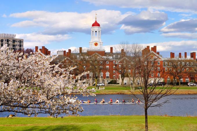 Đại học Harvard vào mùa xuân. Ảnh: Shutterstock