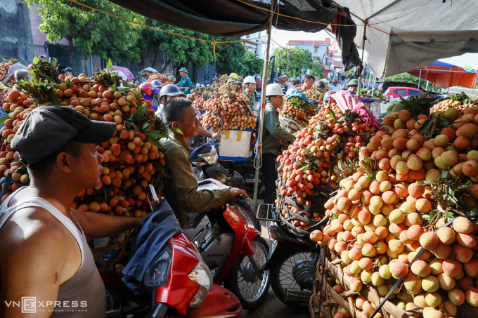 Người dân huyện Thanh Hà (Hải Dương) thu hoạch, vận chuyển vải đến giao cho các cơ sở thu mua trên địa bàn trong mùa vụ 2020. Ảnh: Ngọc Thành