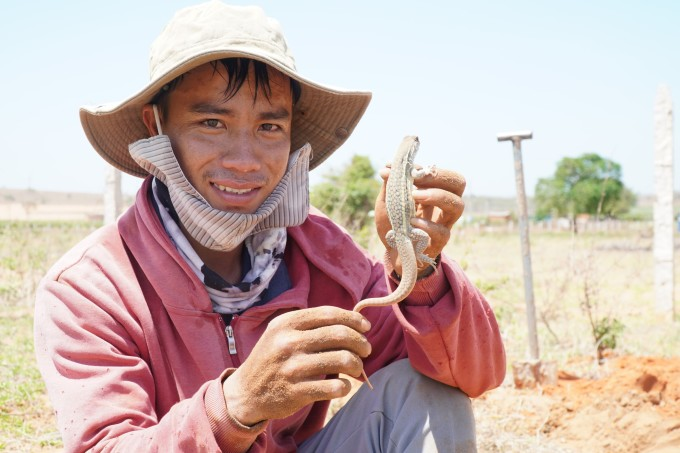 Châu Văn Trọng, 29 tuổi, đi đào dông trên đồi cát xã Tiến Thành, TP Phan Thiết. Ảnh: Việt Quốc.