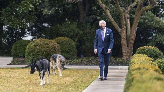 Tổng thống Biden đi bên cạnh hai cún cưng trong Vườn Hồng, Nhà Trắng, ngày 26/1. Ảnh: White House.