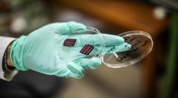 Cảm biến trong chiếc mũi điện tử mà nhóm nghiên cứu phát triển. Ảnh: Đại học Pennsylvania.