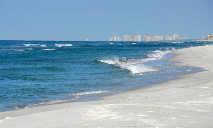 Một bãi biển ở Công viên Grayton Beach State, gần nơi xảy ra vụ tấn công. Ảnh: Alamy/NY Post.