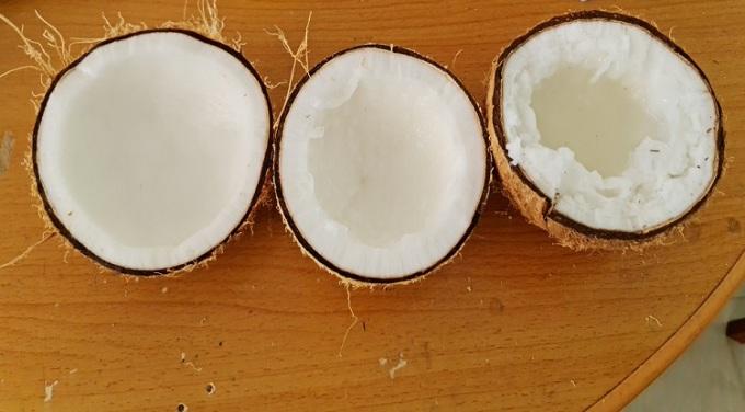 Ba loại dừa máy nhận biết gồm dừa khô, dừa sáp mỏng, dừa sáp đặc. Ảnh: NVCC.