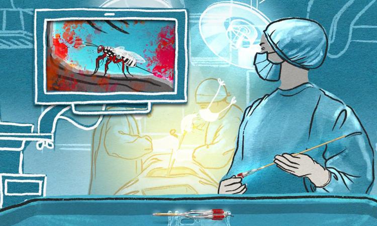 Dụng cụ phẫu thuật lấy cảm hứng từ tò vò đẻ trứng