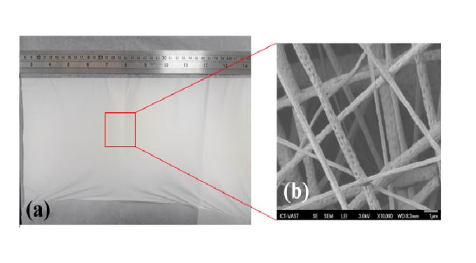 Các sợi nano kích thước vài trăm nanomet được phóng to 100 nghìn lần bằng kính hiển vi điện tử. Ảnh: NVCC.
