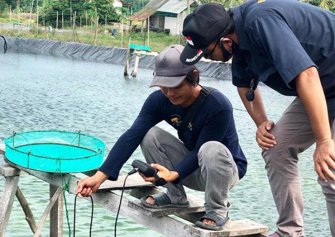 Công nghệ quản lý trang trại nuôi tôm của Jalatech đã được ứng dụng tại các trang trại nuôi tôm ở Indonesia. Ảnh: Jala.