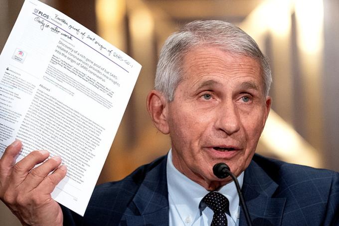 Tiến sĩ Anthony Fauci trong phiên điều trần tại Thượng viện hồi tháng 7. Ảnh: Reuters.