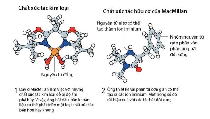 Minh họa chất xúc tác kim loại và chất xúc tác hữu cơ của David MacMillan. Nguồn: RSAS